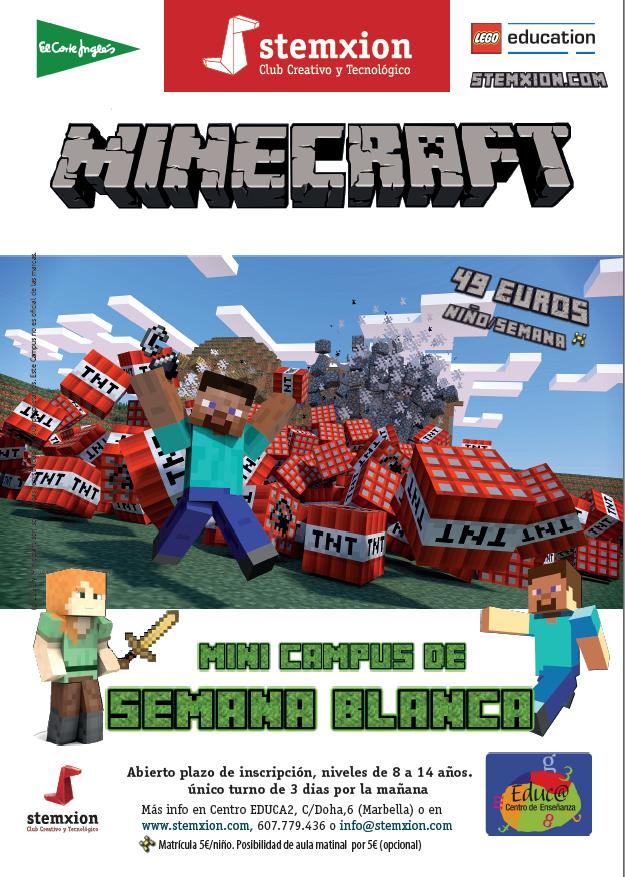 Minecraft Stemxion Marbella